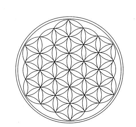 il fiore della vita significato geometria sacra