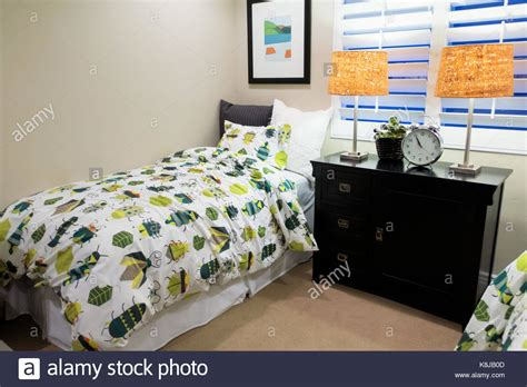 bed bugs comforter bed bugs stock photos bed bugs stock images alamy
