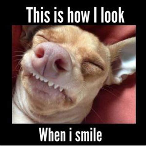 Ugly Smile Meme - good ugly jokes kappit