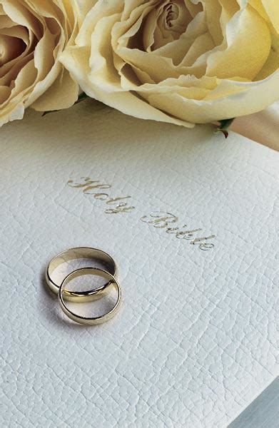 wedding bible release date holy bible with white roses and rings wedding bulletin