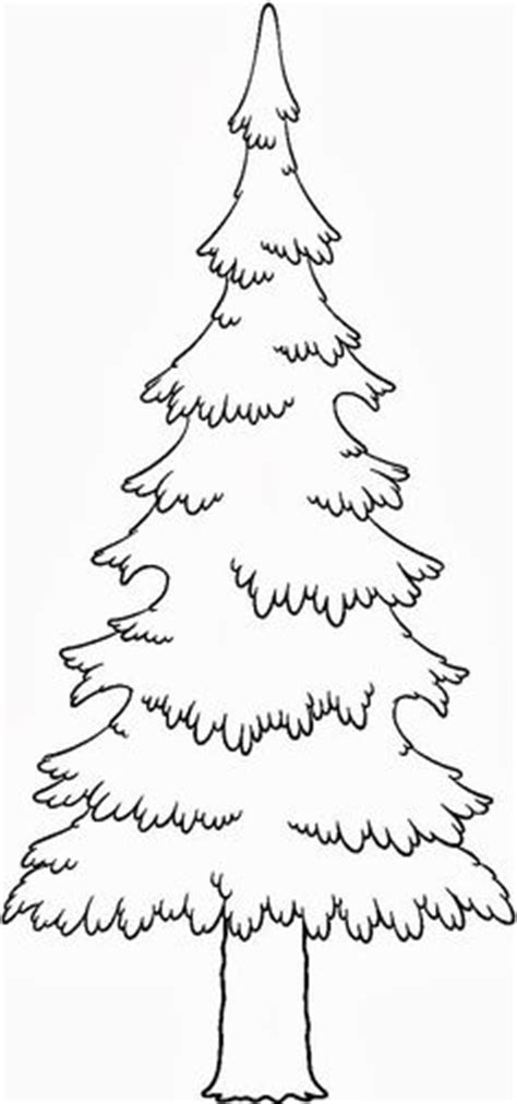 coloring page of pine trees coloring trees leaves on pinterest coloring pages