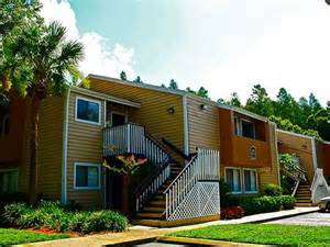 1 Bedroom Apartments Tampa News One Bedroom Apartments Tampa On Is A Tampa Apartment