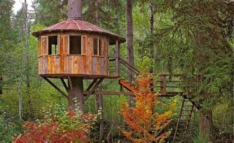 tree house designer standout tree house designs not just for kids anymore