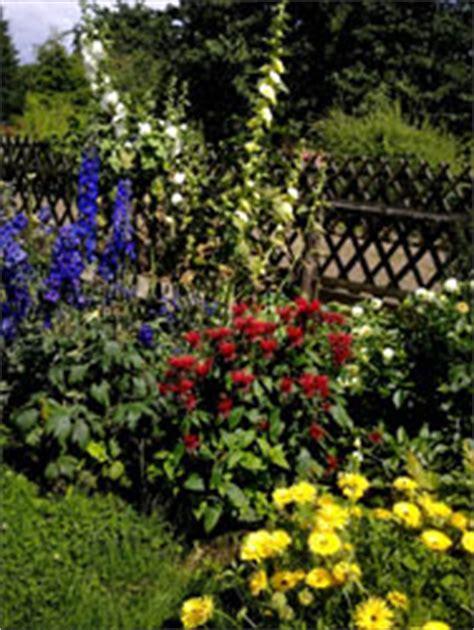 Garten Pflanzen Im August by August Gartenkalender Ernten Und Pflegen
