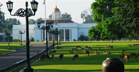 amazing indonesia bogor grand botanical garden