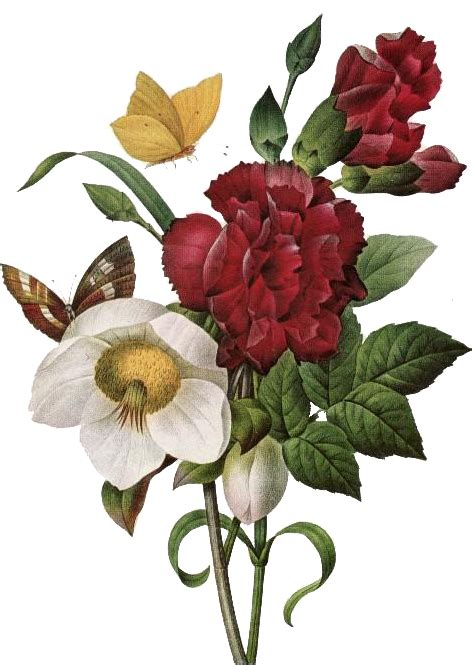 imagenes retro en png im 225 genes vintage gratis free vintage images flores y