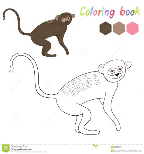 vervet monkey coloring page vervet coloring download vervet coloring