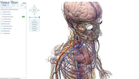 imagenes en 3d del cuerpo humano visible body atlas 3d de anatom 237 a humana biblioteca