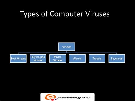 types of computer viruses easy tech now