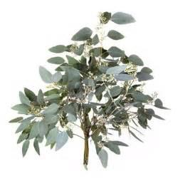 Wedding Flowers Silk Eucalyptus Populus Met Bes Mini