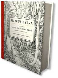the new sylva a 1408835444 sylva foundation shop
