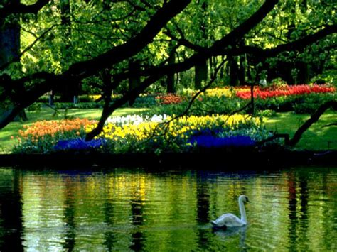 beautiful spring scenery wallpapers wallpapersafari desktop wallpaper beautiful spring scenes wallpapersafari