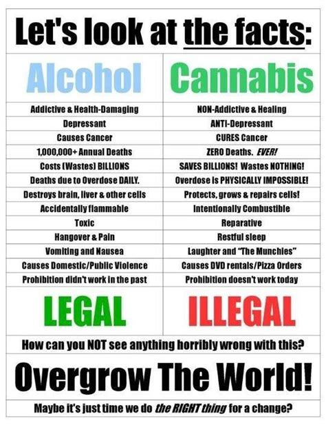 Marijuana Detox Facts by 25 Best Ideas About Marijuana Facts On