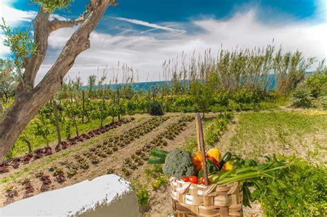 orto e giardino biologico orto biologico e frutteto ischia hotel il gattopardo