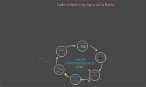 cadena epidemiologica la rabia cadena epidemiol 243 gica de la rabia by andrea delgado on prezi