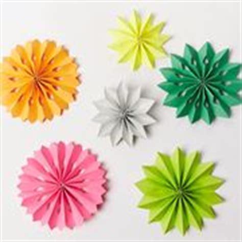fiori cartapesta fiori di carta pesta