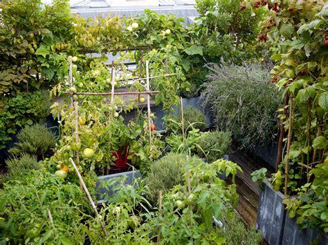 roof garden plants secret paris a tiny roof garden with an eiffel tower view