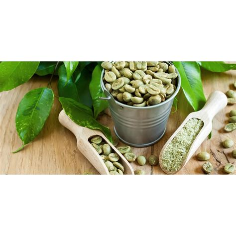 Green Coffee Kopi Hijau kopi hijau premium kopi diet langsing green coffee