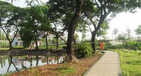 Bibit Kaliandra Jawa Timur cv mitra bibit hijaukan kota surabaya