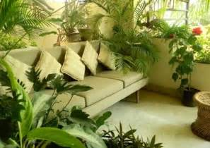 apartment plants ideas balcony gardening design and create your little green