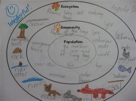 ecosystems 11 studyjams interactive science activities lesson plans 5th grade science ecosystem 1000 ideas