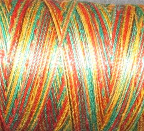 Variegated Thread Quilting by Valdani Variegated 100 Cotton Quilting Thread 540 Yard