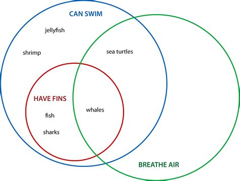 venn diagram random thoughts venn diagram for critical thinking