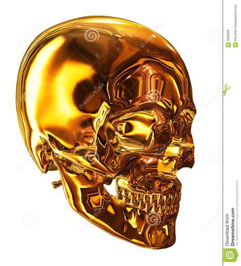 golden skull royalty  stock  image