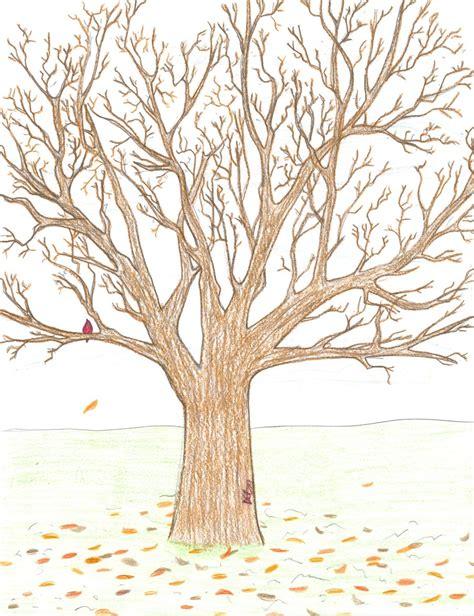 b tree drawing tool realistic tree drawing realistic tree by songbreez