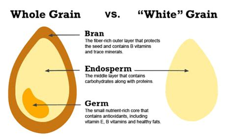 whole grains meaning in kannada a smart store cupboard brown vs white the gluttonous