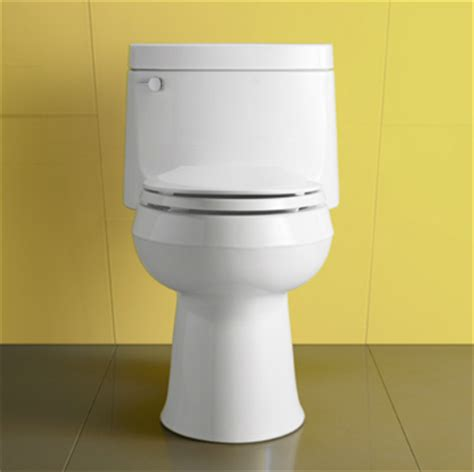 Kohler Plumbing Supplies by Kohler Toilets Miami Call Coral Gables Plumbing To Learn