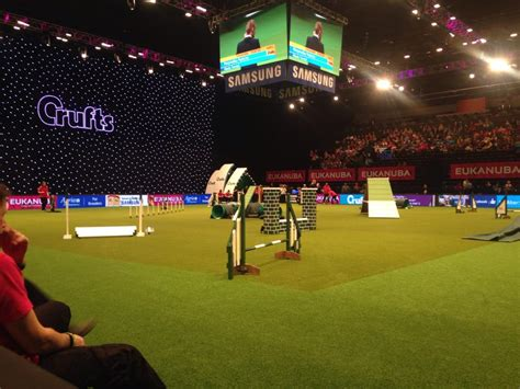 bad agility episode 91 agility at crufts