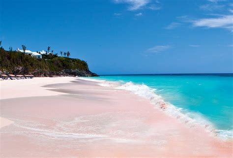 pink sand beach pink sands beach harbour island bahamas feel the planet