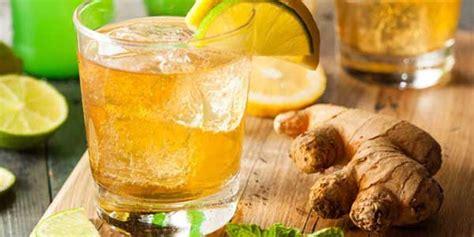 resep es lemon jahe mint segar resepkokico
