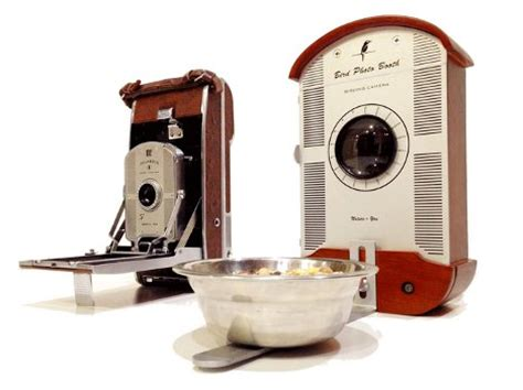 high tech bird feeder makes unprecedented nature photos