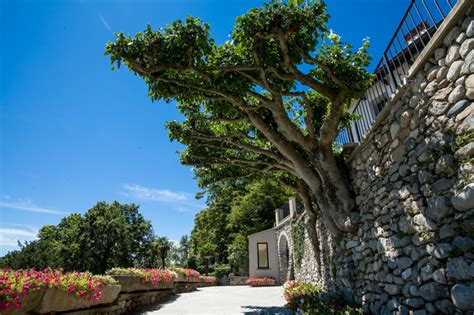 enfold theme crack villa calchi location per matrimoni ed eventi