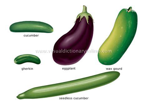 3 vegetables in food kitchen food vegetables fruit vegetables