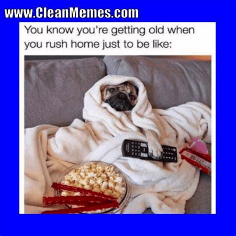 Clean Dog Memes
