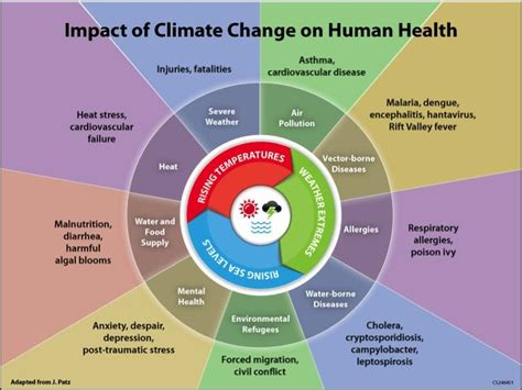 changes been made that affect the global template climate change will boost diseases like asthma allergies