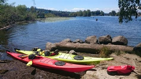 moss bay boat rental seattle 10 things to do near residence inn seattle downtown lake union