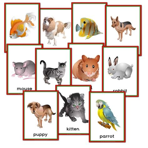 theme names for pets pet animals themed posters primary treasure chest