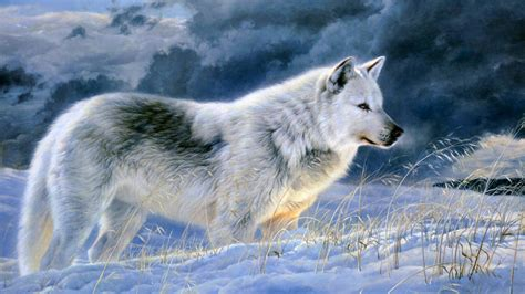 beautiful animal wallpapers hd pictures  hd wallpaper
