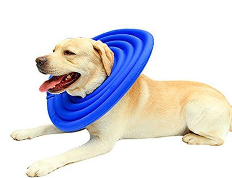 how to make dog cone more comfortable doglemi protective recovery pet soft cone comfortable e