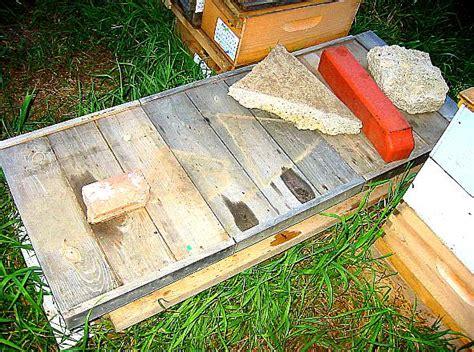 tanzanian top bar hive bush bees foundationless frames top bar hive long hives natural cell size natural