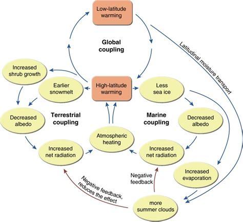 causal loop diagram tool 20 best images about causal loop diagrams on