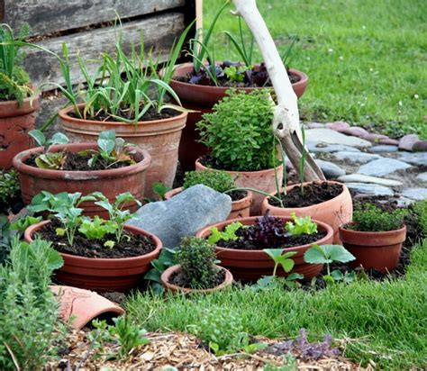 Pot Gardening Vegetables Container Vegetable Garden Outdoortheme