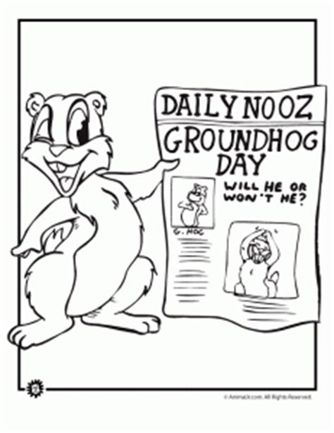 groundhog day adalah grade 1 groundhog day colouring picture