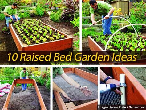 backyard raised garden ideas 10 raised bed garden ideas