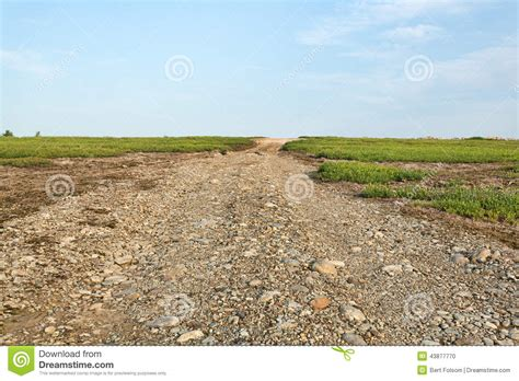 road utilities utility road between blueberry fields stock photo image