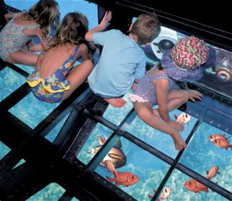 glass bottom boat freeport things to do in freeport bahamas